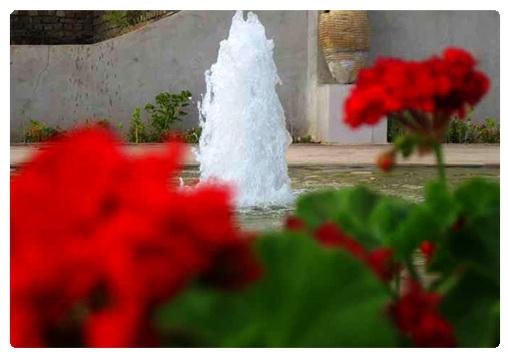عکس ارسالی کاربران: رقــــــص آب