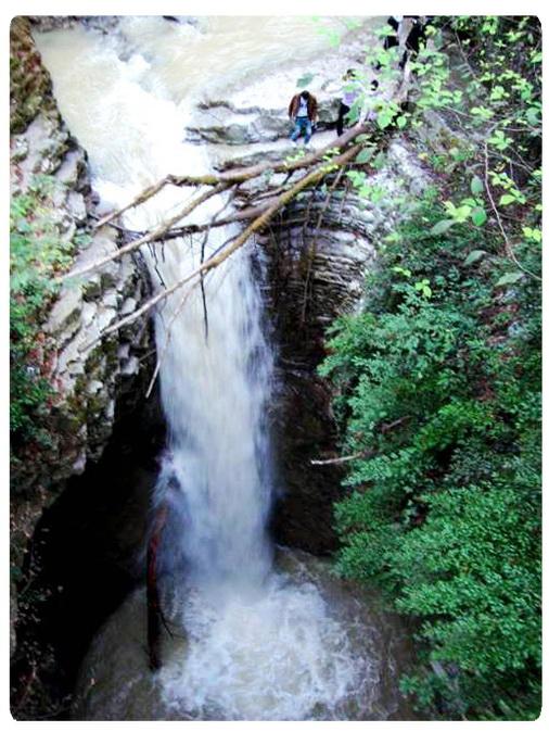عکس ارسالی کاربران سایت رسمی مجید اخشابی http://www.majidakhshabi.com آبشار جنگل