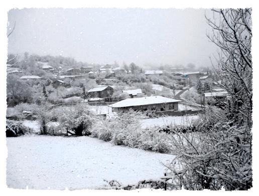 عکس ارسالی کاربران سایت رسمی مجید اخشابی زمستان سرما روستا خانه های برفی درخت برفی www.majidakhshabi.com