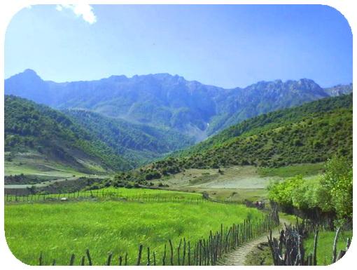 عکس ارسالی کاربران سایت رسمی مجید اخشابی www.majidakhshabi.com منظره طبیعت کوه کوهستان جنگل درخت سبز پرچین مزرعه