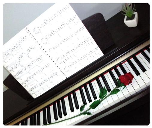عکس ،ارسالی، کاربران، سایت رسمی مجید اخشابی،پیانو ،گل ،رز ،سرخ ،piano ،flower ،www.majidakhshabi.com majid akhshabi official website ،rose