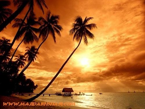 هنر عکاسي: جزیره بالی