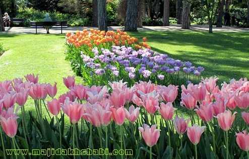 گوشه ای از پارک گل زیبای جنگل بوا دو ونسن در منطقه ۱۸ شهر پاریس